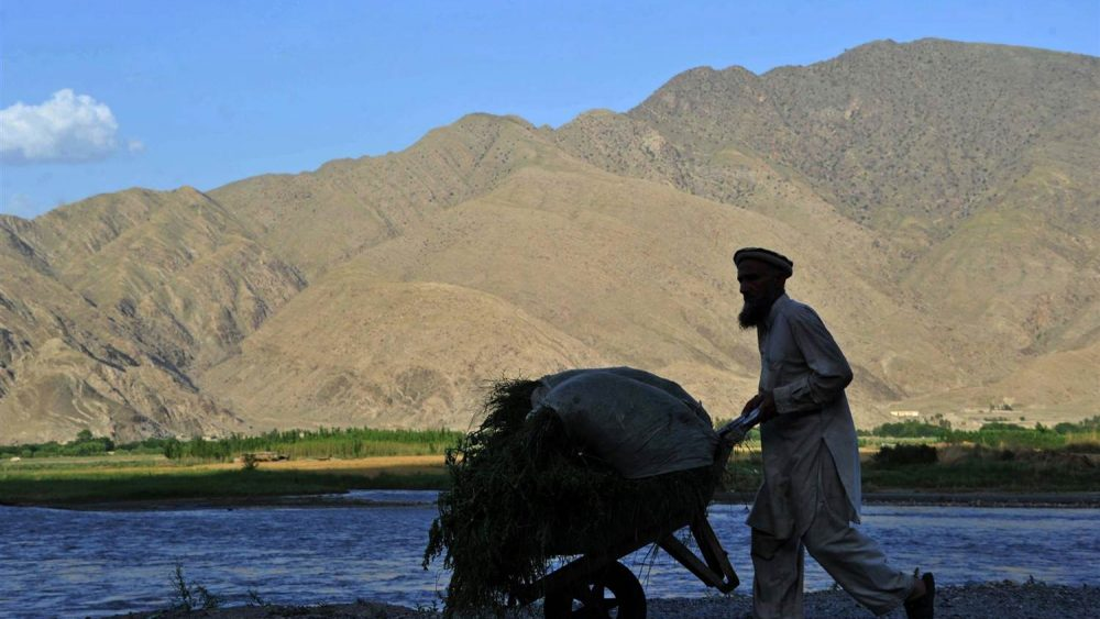 140723-afghanistan-agriculter