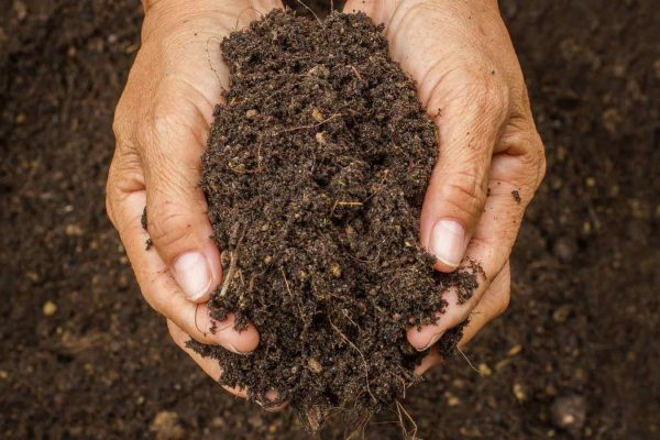 save_our_soils