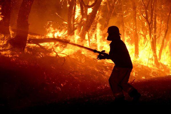 bt-climate-change-bushfire