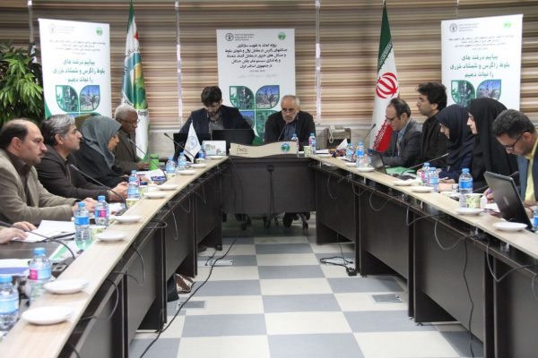 FAO Urges Further Actions to Save Oaks and Boxwood trees of Iranian Forests